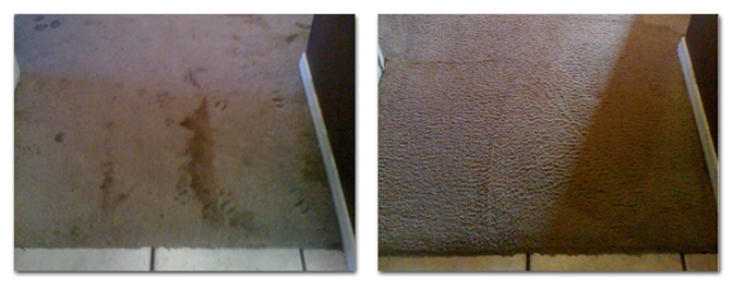 Big Bear Carpet Cleaning Services